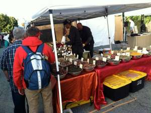 Jubilee Herb Booth